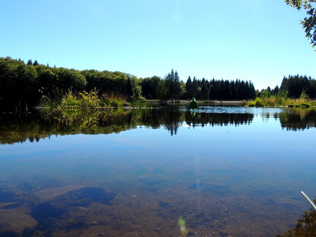 Picherande 11 Lac de Gayme