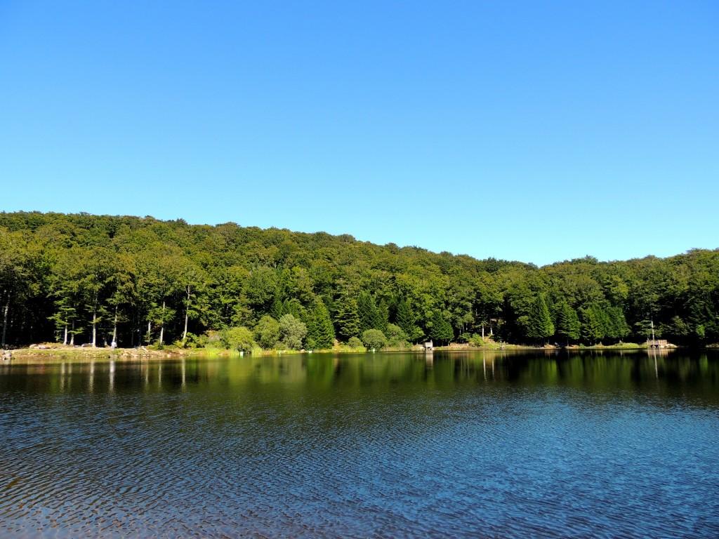 Picherande 5 Lac de Gayme