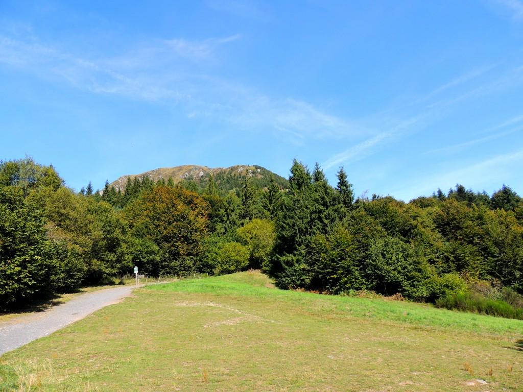Puy-de-Dôme 25