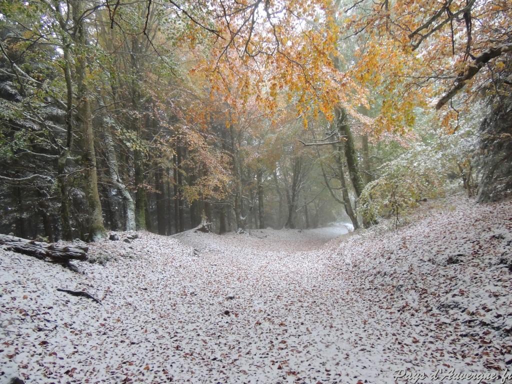 Puy-de-Dôme Chemin des muletiers 15-10 2