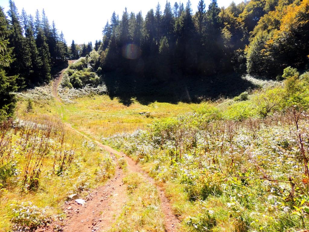Le Puy de Montchal 2