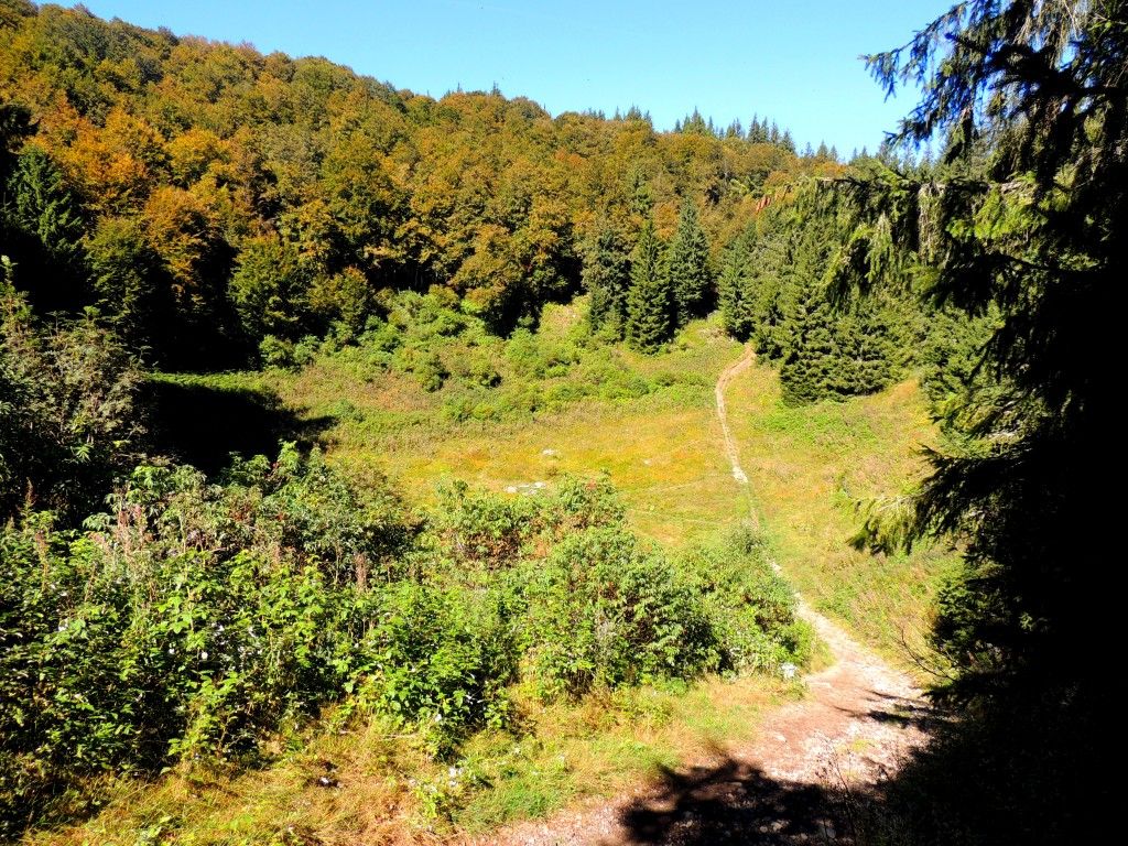 Le Puy de Montchal 3