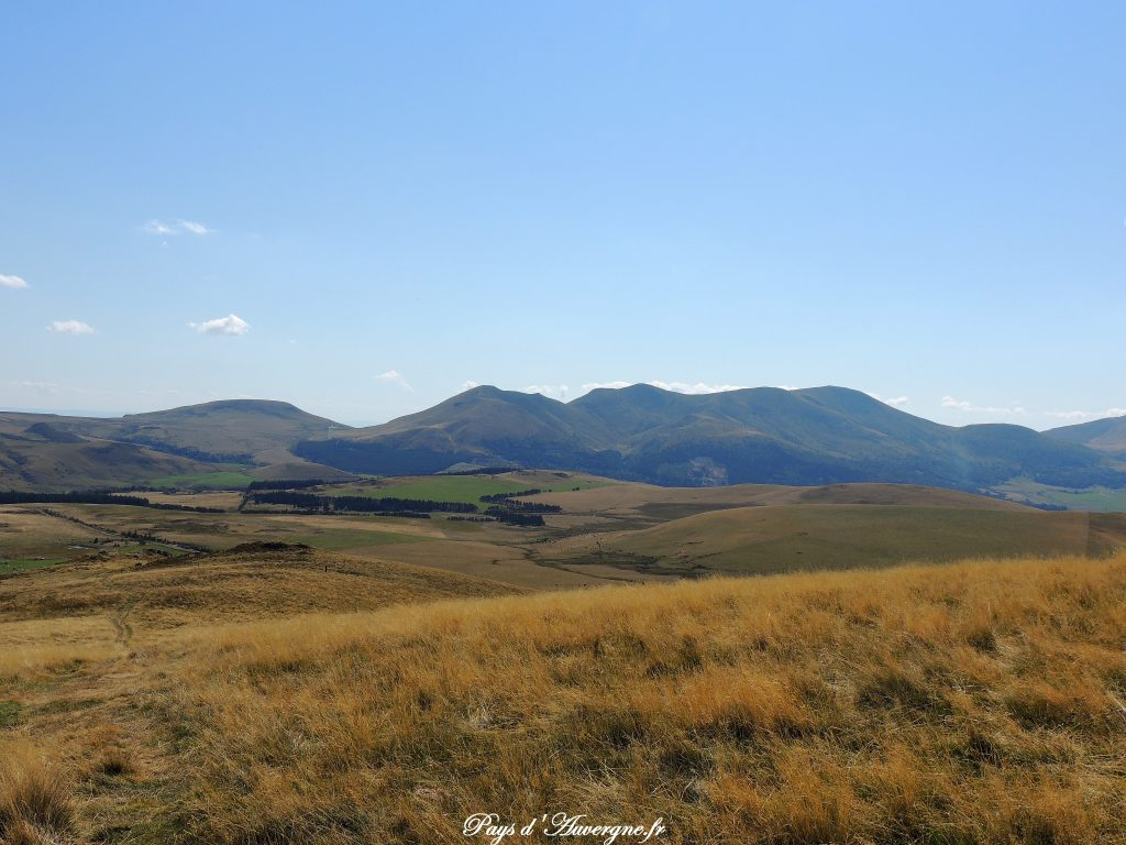 Puy Loup - 11