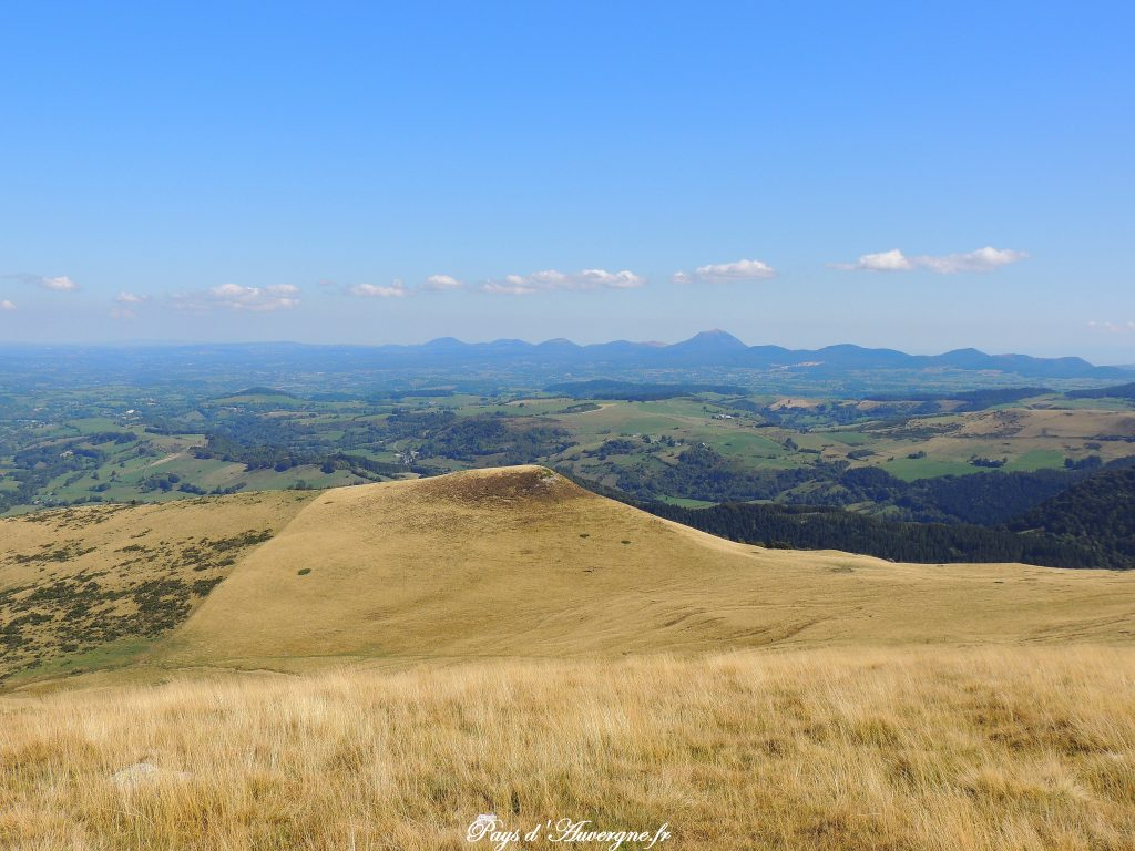 Puy Loup - 13