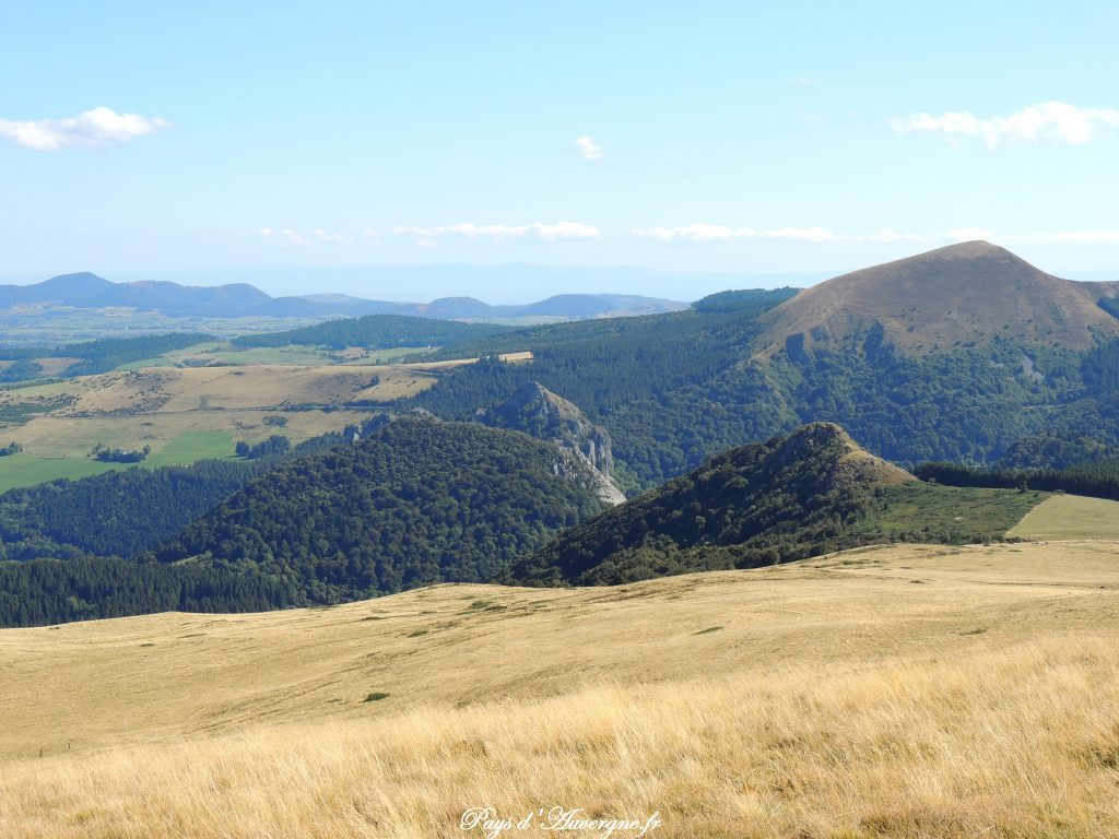 Puy Loup - 14