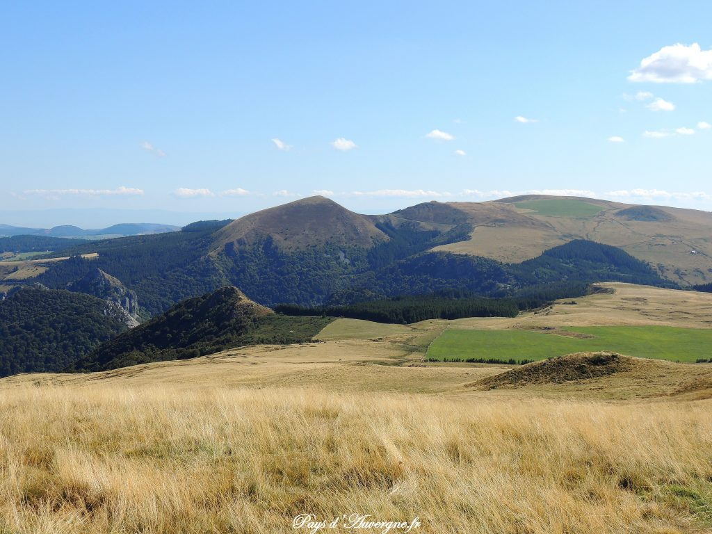 Puy Loup - 9