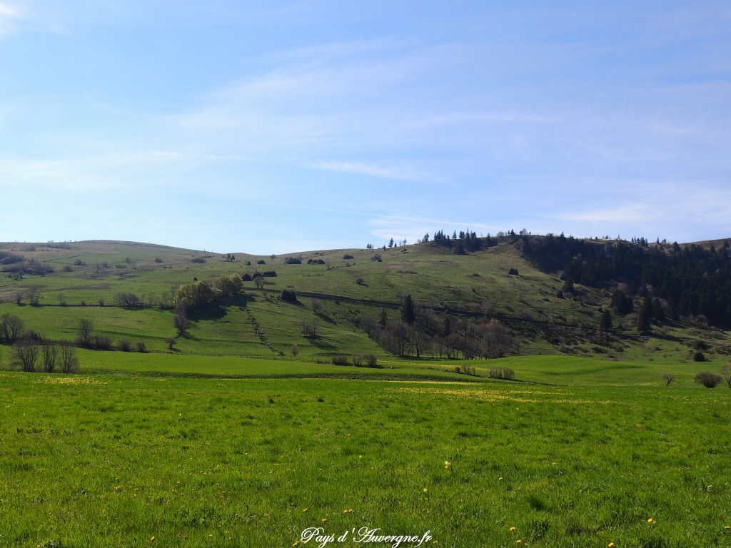 vallée de l'Artoux 6