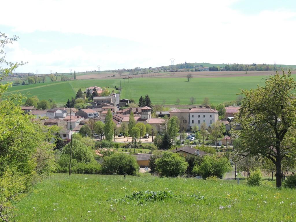 Saint-Martin-des-Plains 3