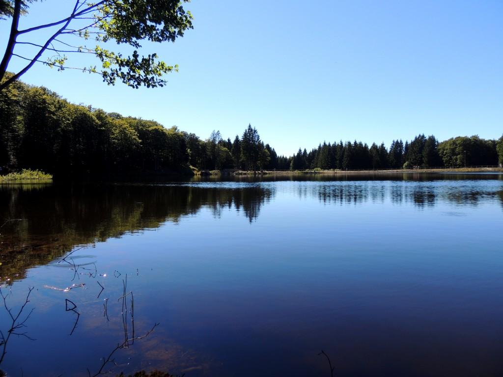 Picherande 13 Lac de Gayme