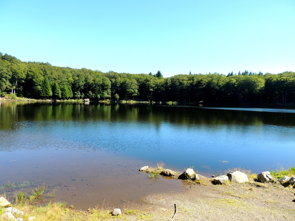 Picherande 6 Lac de Gayme