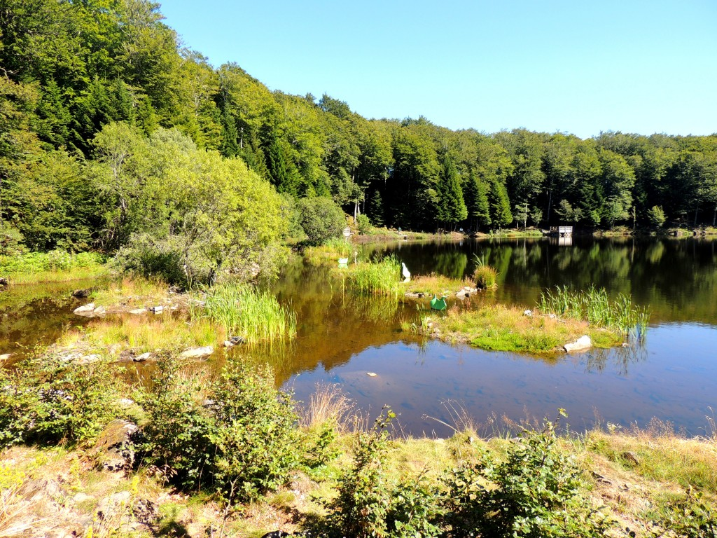 Picherande 7 Lac de Gayme