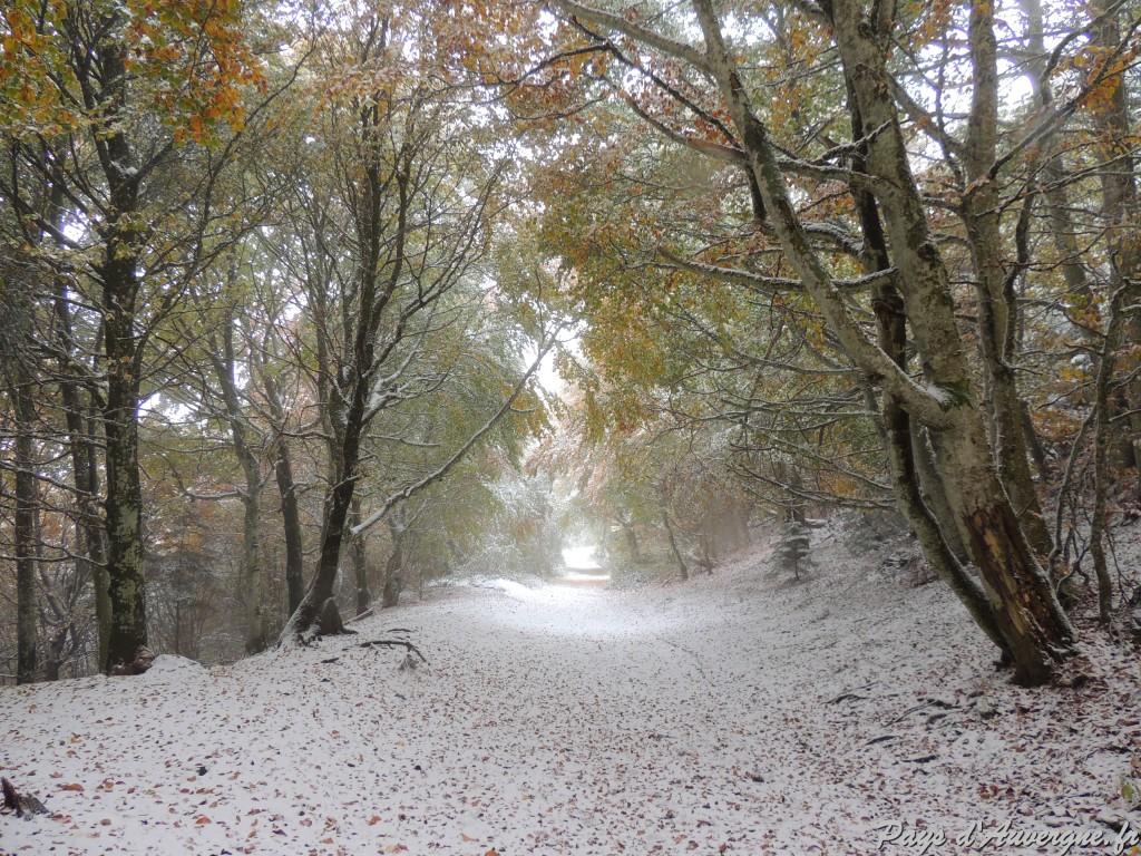 Puy-de-Dôme Chemin des muletiers 15-10 1