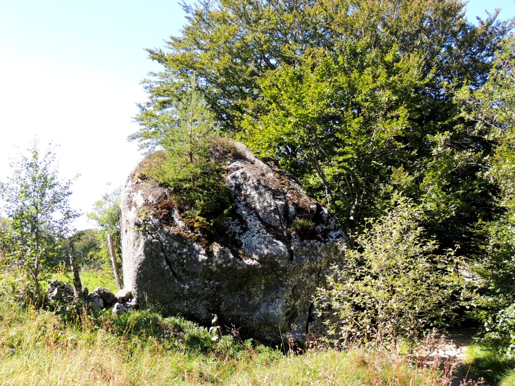 Vallée de la Fontaine Salée 24