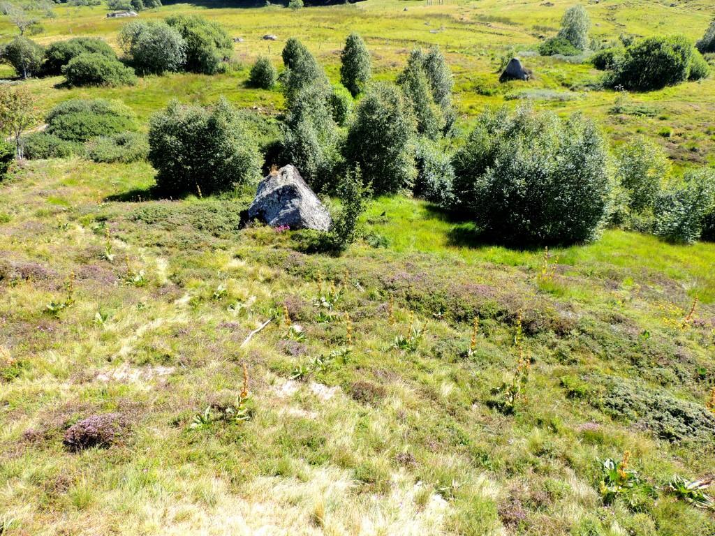 Vallée de la Fontaine Salée 32