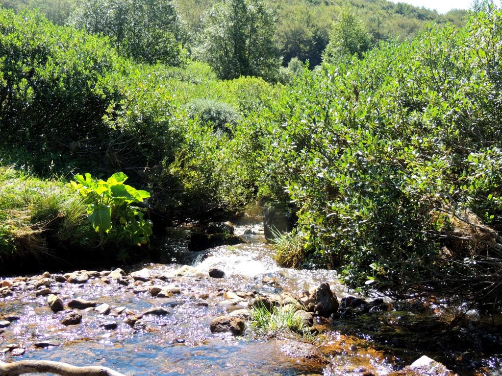 Vallée de la Fontaine Salée 13