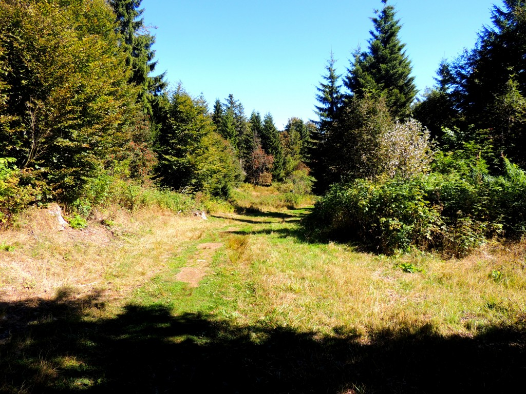 Le Puy de Montchal 4