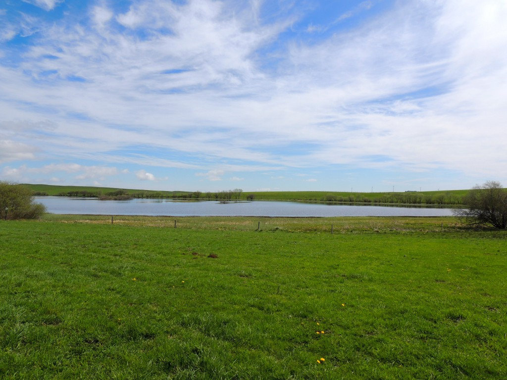 Lac des Bordes - Compains - 10