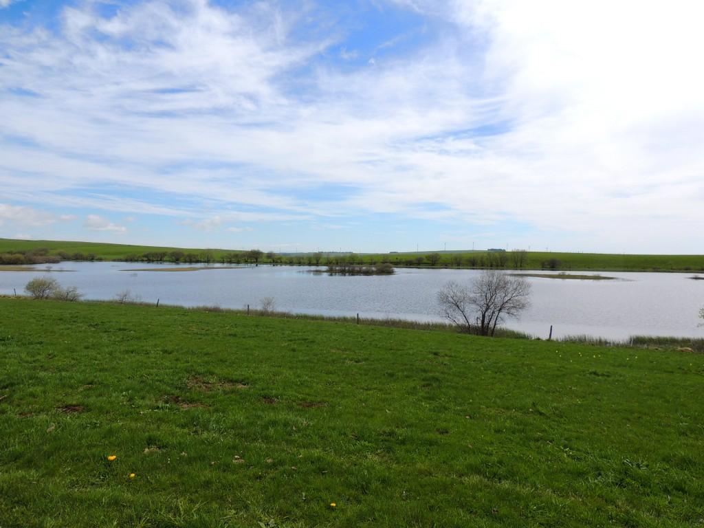 Lac des Bordes - Compains - 13