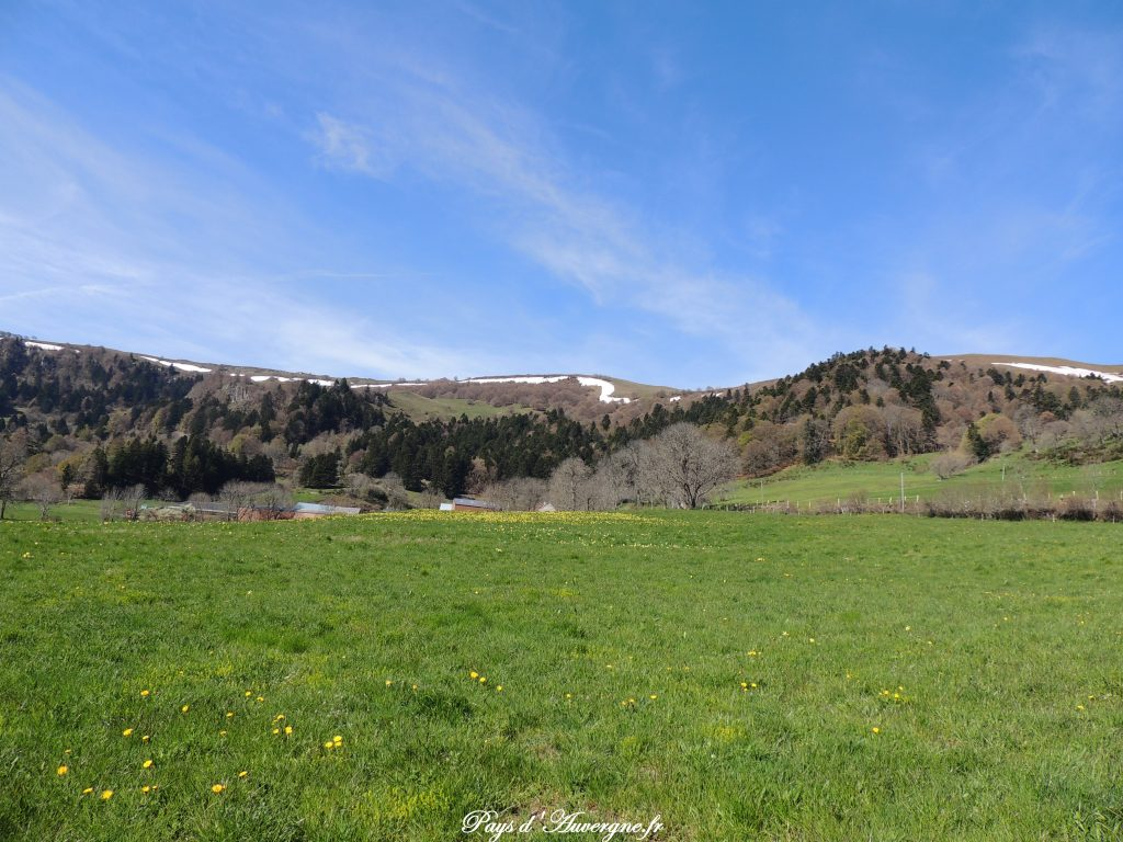 vallée de l'Artoux 10