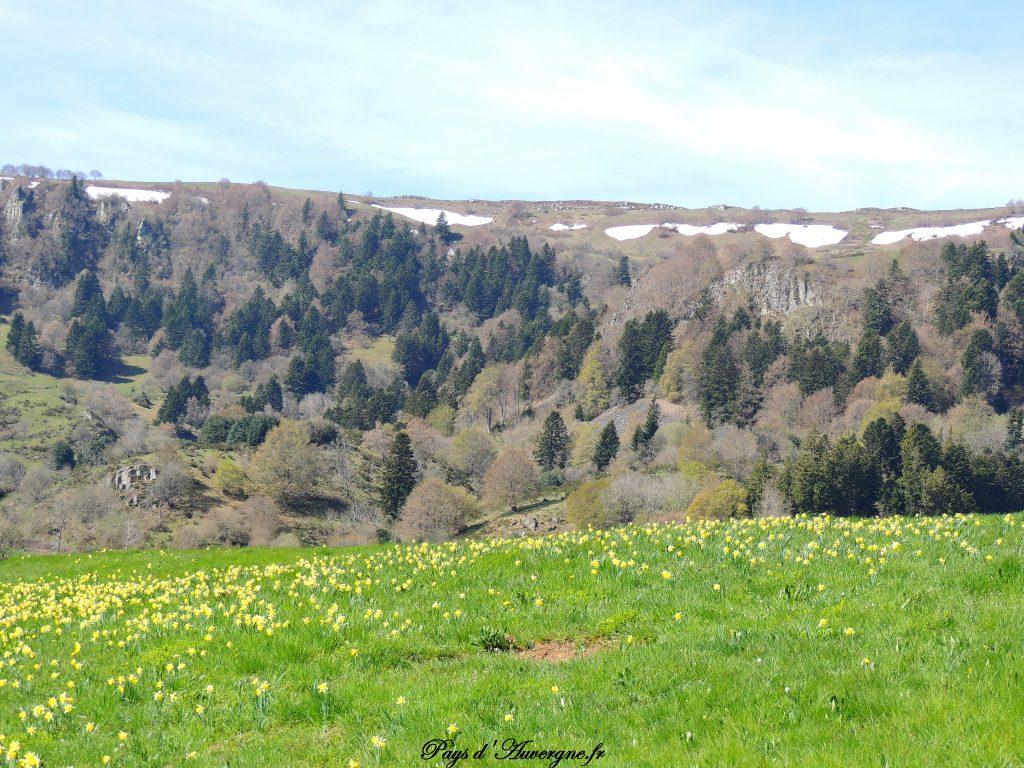 vallée de l'Artoux 12