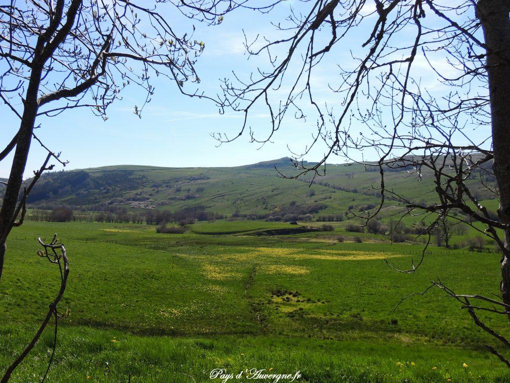 vallée de l'Artoux 5